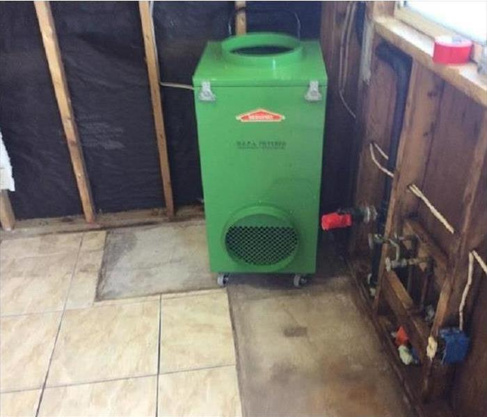 Castle Rock Mold Remediation After