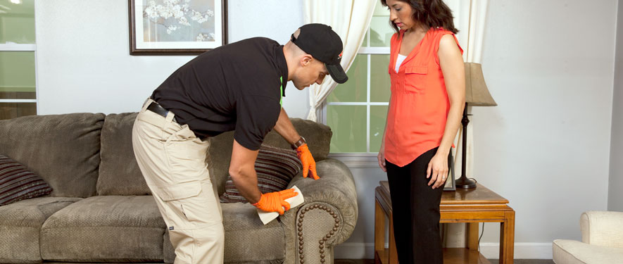 Parker, CO carpet upholstery cleaning